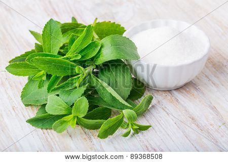 Fresh Stevia Leaves And Bowl With Sugar