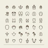 Set with icons - traces of animals and birds. A vector. poster