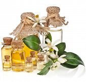 Glass bottles of herbal essences oil with fresh citrus flowers isolated on white background poster