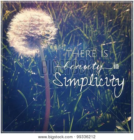 Inspirational Typographic Quote - There is beauty in Simplicity