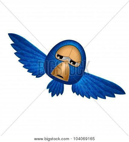 Angry blue bird soars and looks to you