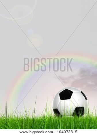 Concept or conceptual 3D soccer ball in fresh green summer or spring field grass with a blue sky rainbowbackground