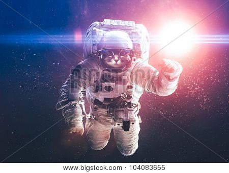 Beautiful cat in outer space. Elements of this image furnished by NASA. poster
