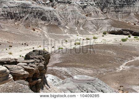 Petrified Forest of Arizona