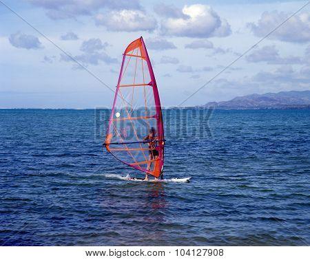 Windsurfer, Tobago.