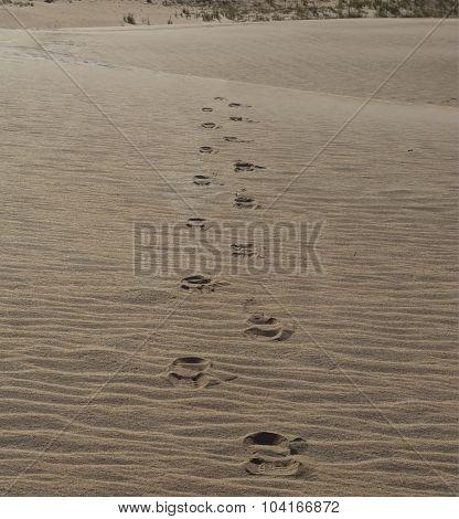 Vanishing Footprints In The Sand
