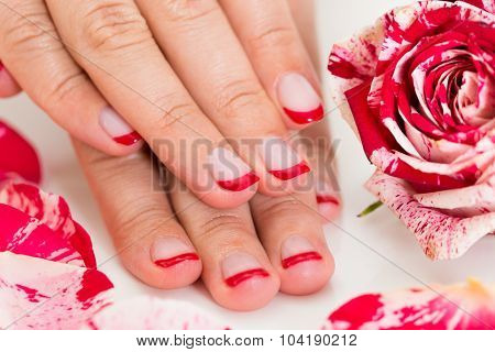 Close-up Of Beautiful Female Hands With Red Nail Varnish Near The Rose poster