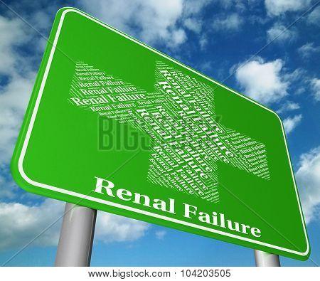 Renal Failure Represents Lack Of Success And Ailments