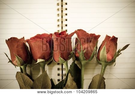 Vintage Style - Red Rose Flower.