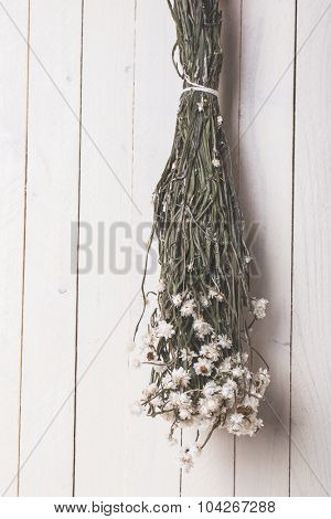 Dried fower hanging over white vintage background