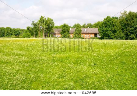 Field And Wooden Rural House