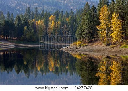 Reflections Of Trees In Autumn.