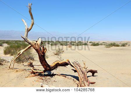 Death Valley Sand