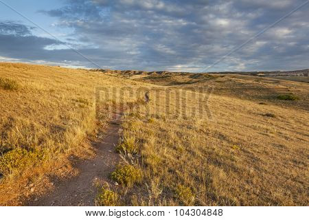 sunrise illuminates a trail through rolling grassland at foothills of Rocky Mountains in Colorado - Soapstone Prairie Natural Area near Fort Collins
