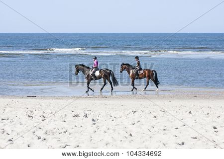 Horse Riding On The Beach, Editorial