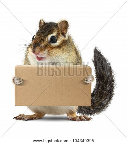 Funny Animal Chipmunk Hold Box, Delivery Concept