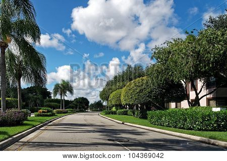 Empty Residential Street Florida Neighborhood