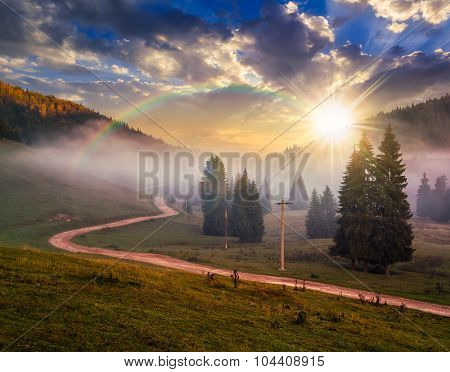 Road  Near Fir Forest In Foggy Mountains At Sunset