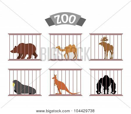Zoo. Collection Of Wild Animals In Cages. Beasts Behind Bars. Bear And Moose In Captivity. Kangaroo