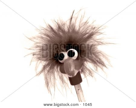 Funny Sepia Bird