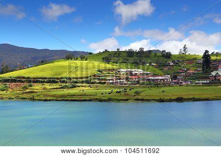 landscape with Gregory lake in Nuwara Eliya - Sri Lanka