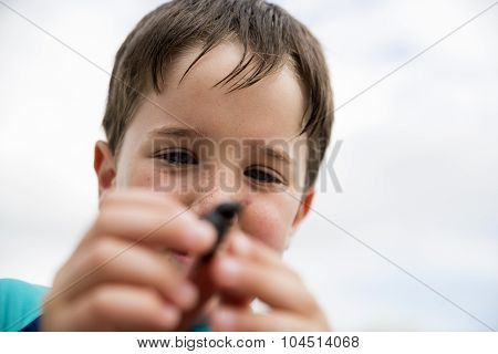 Little boy with dung beetle