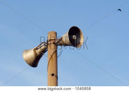 Loud-Speaker And Bird