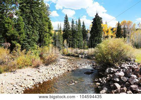Mountain Stream Autumn Colors