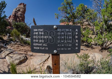 Trail Sign In The Needles