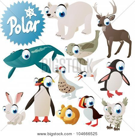 cute arctic antarctic pole animals and birds for children apps or books: whale, polar bear, seal, deer, grouse, tern, penguin, puffin, hare, lemming and owl