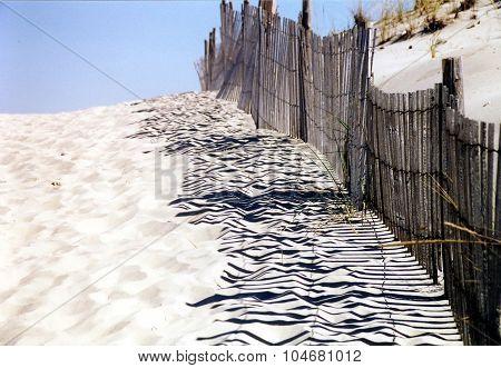 Rehoboth Beach 2000
