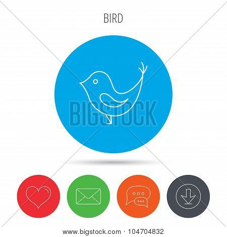 Bird with beak icon. Social media concept sign.