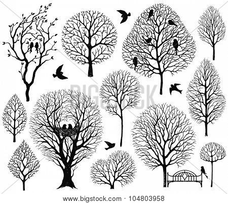Collection of vector silhouettes of trees and birds, hand-drawn illustration.
