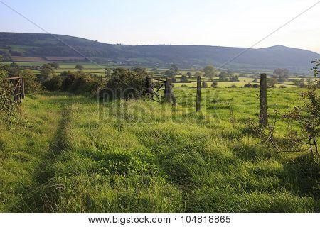 Mendip Hills In Somerset,uk