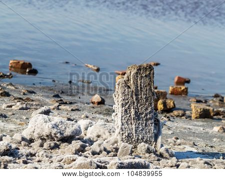 Petrified Salt Acted On Wooden Boards In Dry Estuary, Selective Focus. Water Has Receded Far Into Th