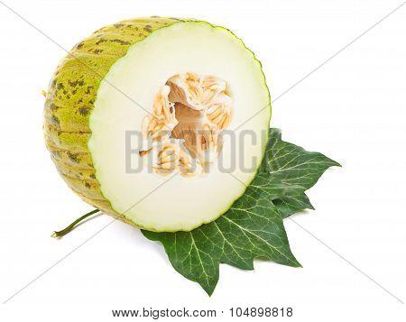 Ripe Melon Pela De Sapo With Green Leaves