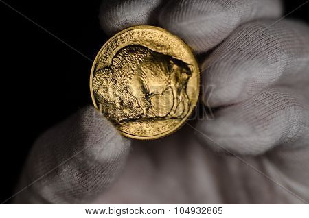 United States Gold Buffalo Being Held