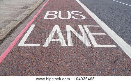 Bus Lane Traffic Signs On Asphalt