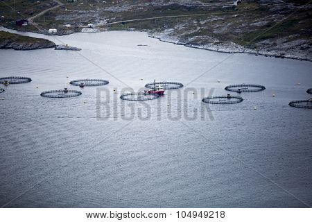 Norwegian landscape with fish farm in a fjord taken during the Traenafestival music festival taking place on the small island of Traena