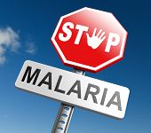 stop malaria by prevention treatment with pills or mosquito nets good diagnosis for symptoms and insect repellent and net avoids bite and infection with parasite poster