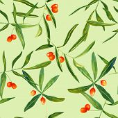 Watercolour sandthorn berries and leaves seamless background pattern poster
