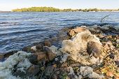 White foam pollution in the Dnieper river in Kiev poster