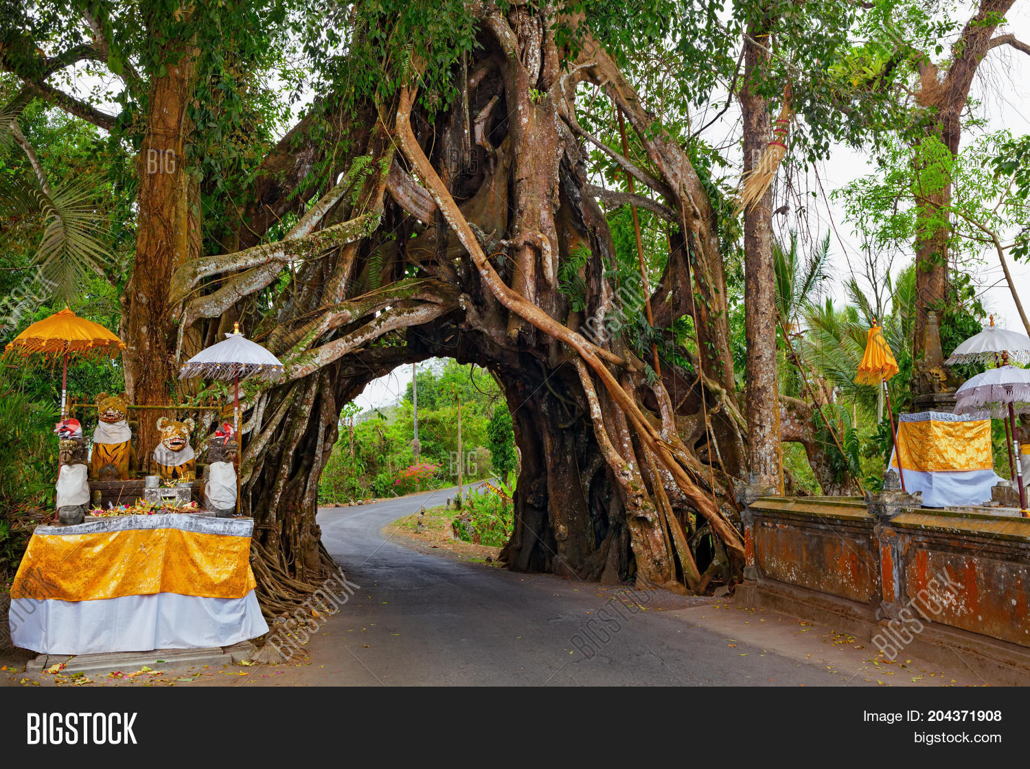 Traditional Balinese Image Photo Free Trial Bigstock
