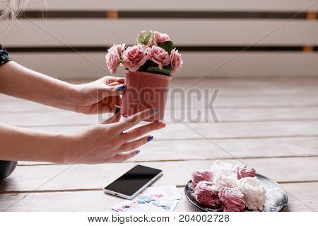 Process of decoration for food photo of sweets. Colorful zephyrs and crimson roses with smartphone on wooden backdrop, delicious confectionery and gourmet cookies photography