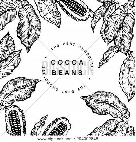 Cocoa bean tree design template. Engraved style vector illustration. Chocolate cocoa beans. Typography stamp or label