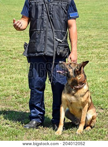 Police man with his sniff dog outdoor