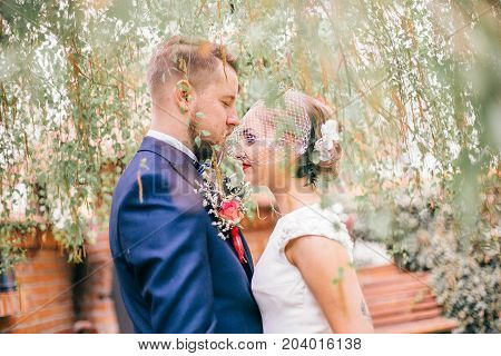 portrait of romantic newlywed couple cuddling under the tree with copy space