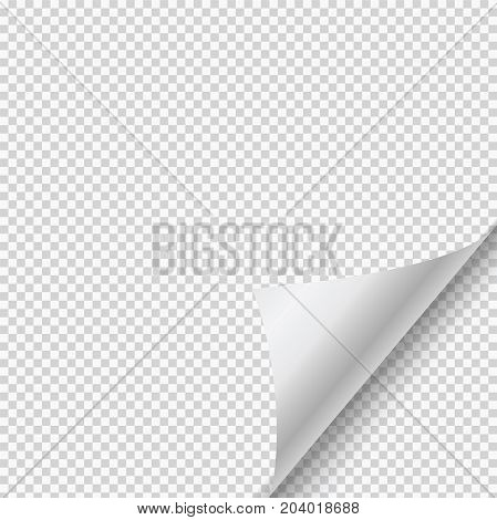 Vector paper page curl with shadow on transparent background.
