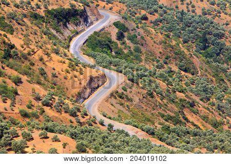 curvy mountain road Asphalt road in summer forest morocco lanscape mountain landscape.