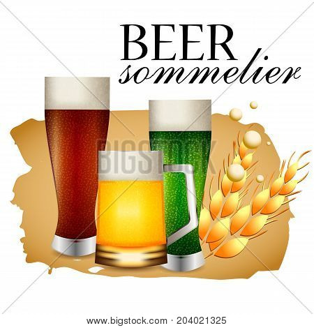 Beer sommelier banner with three beer glasses with dark green and light brew on white background. Vector illustration